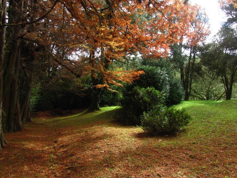 outono_verde